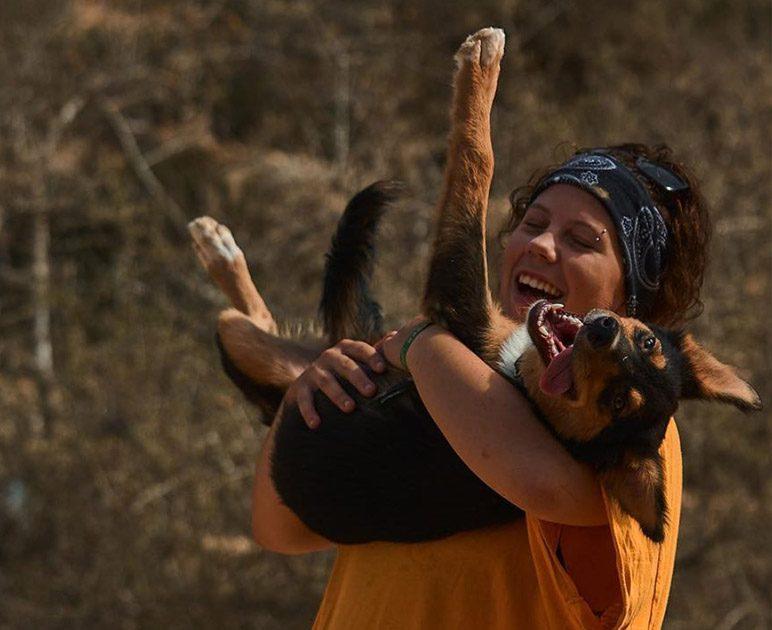 fifi adoption testimonials morocco animal aid